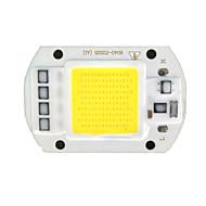 zdm ™ diy 50W 500lm 6000-6500k hideg fehér fény integrált LED-modul nagynyomású lemez (AC 220 V)