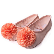 Non Customizable Kids' Dance Shoes Canvas Canvas Ballet Flats Flat Heel Practice / Performance Pink / Red / Other
