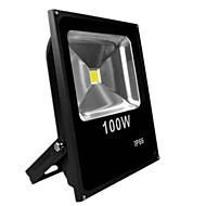 따뜻한 / 차가운 백색 검정 초박형 IP65 야외 100W 투광 조명 주도 전구 (AC85-265V)