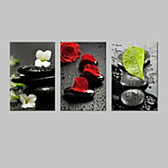 VISUAL STAR®Zen Flower Canvas Wall Prinitng Art Home and Office Decor Peace Life Canvas Artwork Ready to Hang