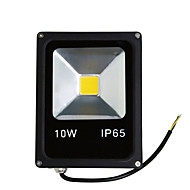 10W Warm/Cool White Color Led Floodlight Spotlight Outdoor Lighting(AC85-265V)