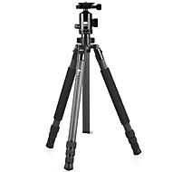 Sirui  R2204  G20Kx Carbon Tripod  With Aterials Folder  Fast Loading Board Feet For Micro Single General Slr Set Of Machine