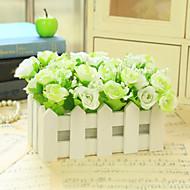 """6.3 """"l 6.3"""" h belas rosas de ouro multicolor em cerca branca"""