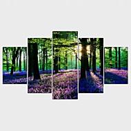 Stampe a tela Floreale/Botanical Classico Pastorale,Cinque Pannelli Tela Qualsiasi forma Stampa artistica Decorazioni da parete For