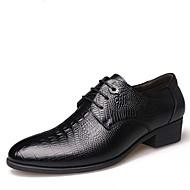 Черный Коричневый-Для мужчин-Для прогулок Для офиса Повседневный Для вечеринки / ужина-Кожа-На плоской подошве-Удобная обувь-Туфли на
