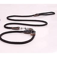 Dog Leash Safety Solid Black Brown Nylon