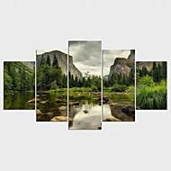 Landschaft Blumenmuster/Botanisch Modern Ländlich,Fünf Panele Leinwand Jede Form Druck-Kunst Wand Dekoration For Haus Dekoration