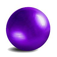 55cm Fitnessboll PVC Rosa Blå Purpur Unisex Other
