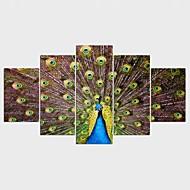 Humor Pejzaże Zwierzę Nowoczesny,Pięć paneli Płótno Wszelkie Kształt Art Print wall Decor For Dekoracja domowa