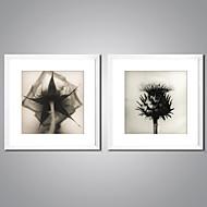 Lámina enmarcada Naturaleza muerta Floral/Botánico Modern Realismo,Dos Paneles Lienzos Cuadrado lámina Decoración de pared For Decoración
