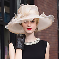 Feather Tulle Headpiece-Wedding Special Occasion Outdoor Headbands Fascinators 1 Piece