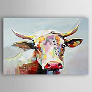 Maalattu Eläin Horizontal,Nykyaikainen Tateellinen tyyli 1 paneeli Kanvas Hang-Painted öljymaalaus For Kodinsisustus