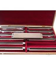 Кейн - (k2413) профессиональные тремоло гармоника 12 клавиш pack/24 holes/24 тонах