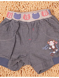 Junge schöne Sommer Hot Pants