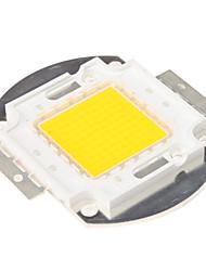 DIY 100W 8000-9000LM 2850-3050K lumière blanche chaude Module à DEL intégrée (33-35V)