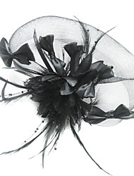 Women's Feather/Tulle Headpiece - Special Occasion Birdcage Veils