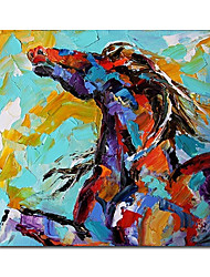 Hand Painted Oil Painting Animal 1211-AN0034