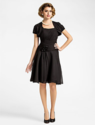 A-line Plus Sizes / Petite Mother of the Bride Dress - Black Knee-length Short Sleeve Chiffon
