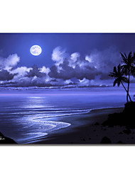 Printed Canvas Art Moonlight Dream by Jon Rattenbury with Strethed Frame