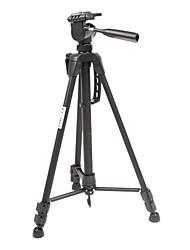 KT-2013 Professional Camera Tripod with DV Head