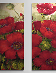 Hand-Painted Floral/Botanical Two Panels Canvas Oil Painting For Home Decoration