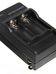 4.2V 600mAh Chargeur avec 2pcs TR 16340 1000mAh 3.7V de protection
