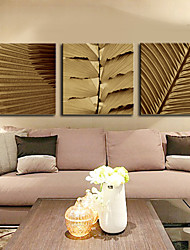 Stretched Canvas Art Botanical Well-spaced Leaves Set of 3