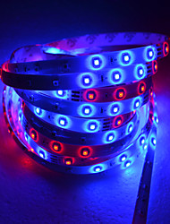 5M LED Strip Light With 54 Lamp Beads