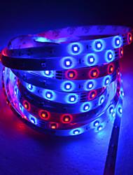5M LED Strip licht met 54 Lamp kralen