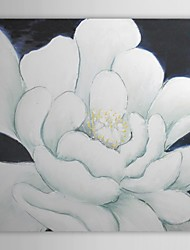 Hand Painted Oil Painting Floral White Flower with Stretched Frame 1310-FL1045