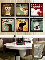 Dog Breed Animal Framed Canvas Print Set of 6