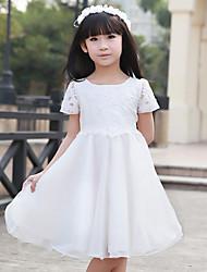 Pied de col de la fille de robe bleu et blanc Série Porcelaine