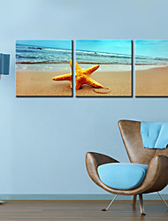 Toiles tendues Art Paysage Sandbeach Set de 3