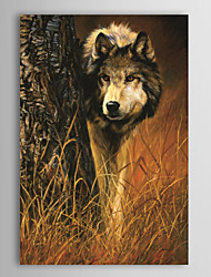 Stretched Canvas Print Art Animal Interested by Lucie Bilodeau