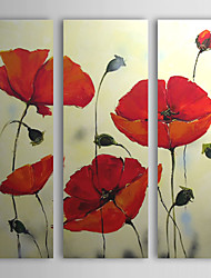 Hand Painted Oil Painting Floral Red Petals with Stretched Frame Set of 3
