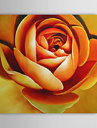 Hand Painted Oil Painting Floral Yellow Rose with Stretched Frame