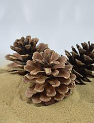 Landscape ecological Decoration natural big pine cones for Ants