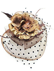 Women's Feather / Fabric Headpiece-Casual Fascinators