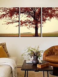 Stretched Canvas Print Art Botanical Red Leaves Set of 3
