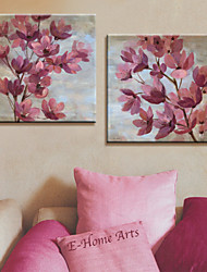 Stretched Canvas Print Art Botanical Pink Petals Set of 2