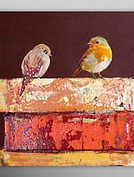 Peint à la main peinture à l'huile animale Deux oiseaux Debout dans le livre avec cadre étiré prêt à accrocher