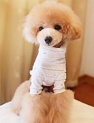 Skinny significativa Moda Roupas Pet Dogs (Assorted tamanho, cores sortidas)