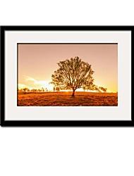 Arbre dans la copie de coucher du soleil Paysage Framed Canvas