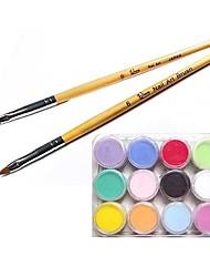 Nail Art Acrílico Kits Escova Carving (2PCS Carving Escova & 12-Color acrílica em pó)