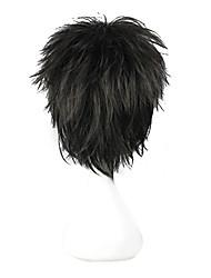 High Quality Cosplay Synthetic Wig The Prince of Tennis Akaya Kirihara Short Wig(Black)