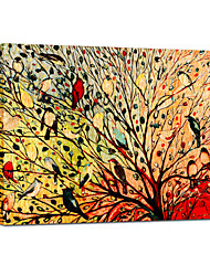 Hand Painted Oil Painting Animal Birds Singing in The Tree  with Stretched Frame