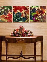 Натяжные холсте абстрактными цветами Набор из 3