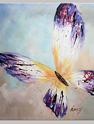 Hand Painted Butterfly  Oil Painting with Stretched Frame Ready to Hang