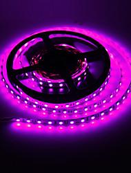 5M 72W 300x5050SMD Rosa lampada LED Light Strip (DC 12V)