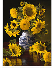 Photographic Blooming Sunflower Roller Shade